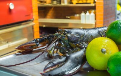 Why Lobster makes For the Ultimate Sophisticated Summer Meal