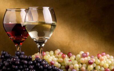 5 Wine Tasting Tips For the Aspiring Connoisseur