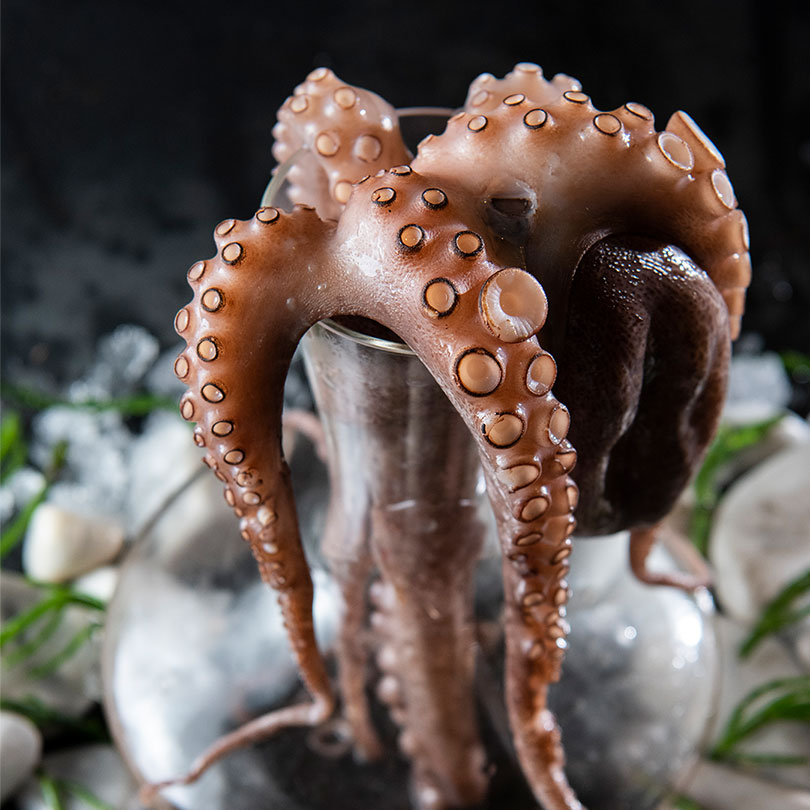 Octopus in a decanter - Sciacca Grill