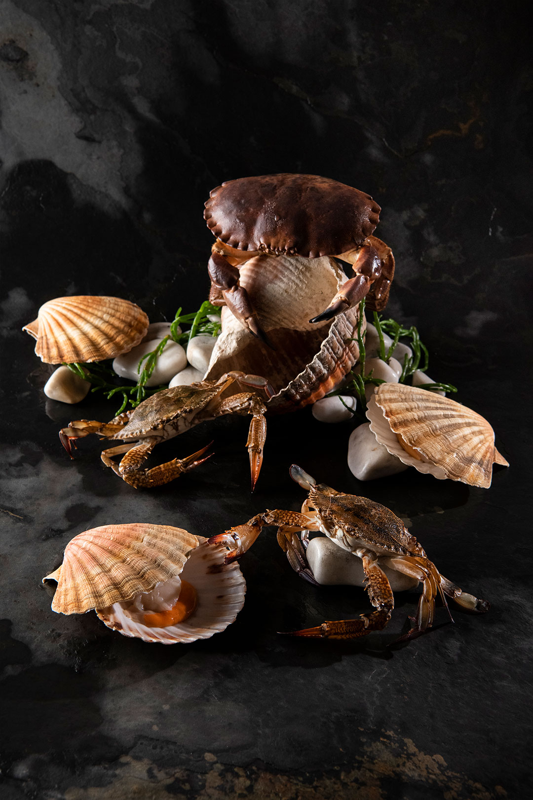Crabs - Sciacca Grill