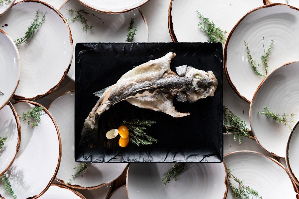 Fish Many Plates