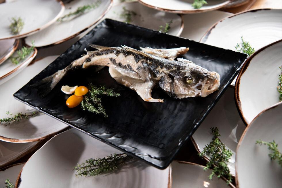 Fish Many Plates Angle