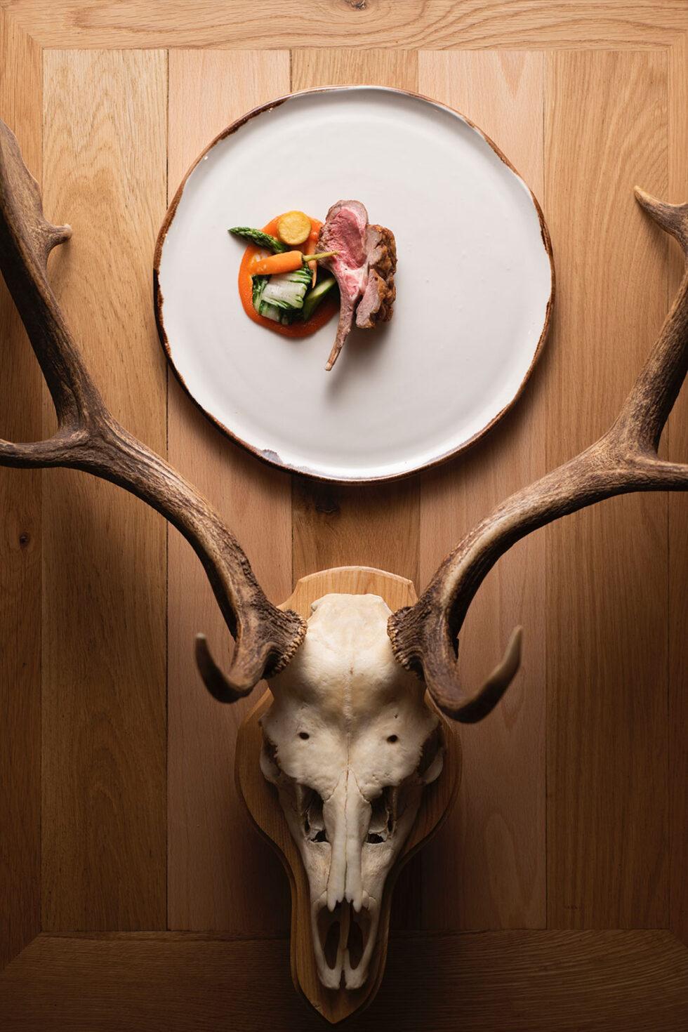 Horns lamb 5